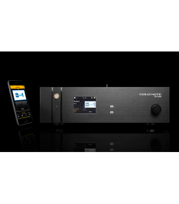 DS1000 - DAC